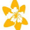 Daffodil.pl