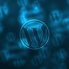 Patryk Adach WordPress Dev