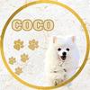 hi_i_am_coco_