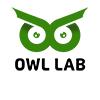 OWL LAB - Damian Pszonak