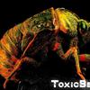 ToxicBeast