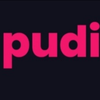 Pudi-design.pl