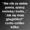 Rochitka