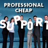 Professional Cheap Support