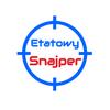 Etatowy Snajper - Doradztwo IT