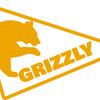 Grizzly web studio