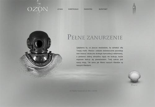 portfolio/013/015513/Ozon_1_big_1.jpg
