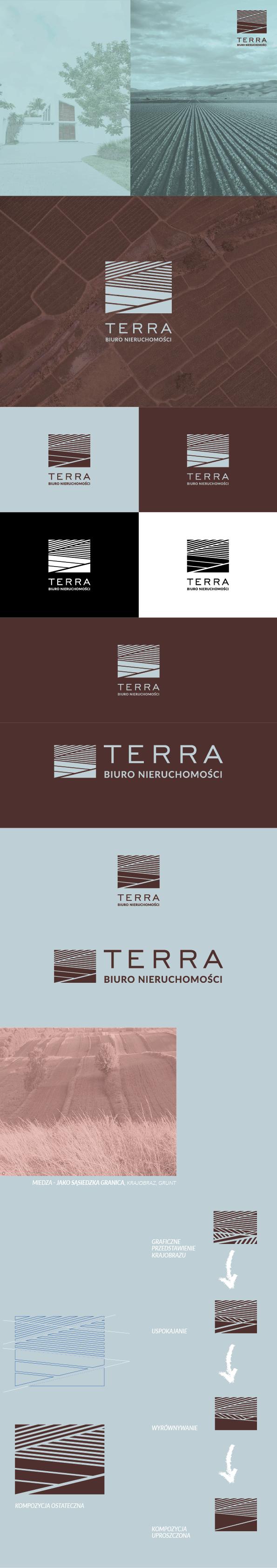 portfolio/025/107225/Terra_2.png