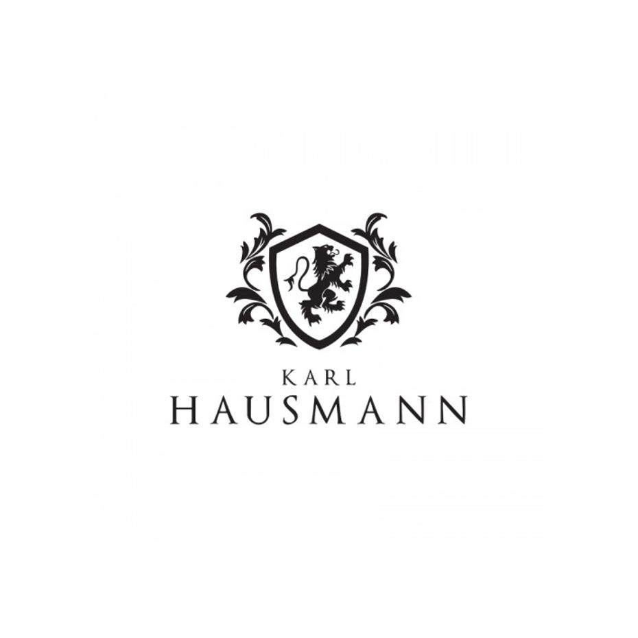 portfolio/033/115733/karlhausmann.png
